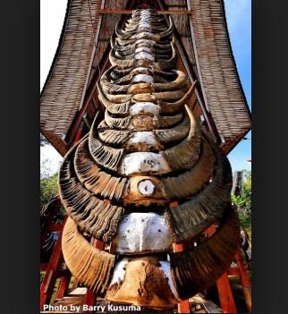 Ulasan terkait dengan rumah adat tradisional Tongkonan yang jadi legenda